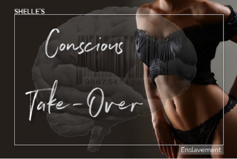 Shelle Rivers - Conscious Take Over - Femdom MP3