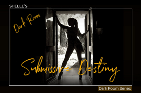 Shelle Rivers - Dark Room Submissive Destiny